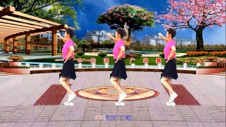梦中的流星广场舞《真心爱你》优美32步舞蹈