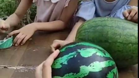 金色的童年:姐妹俩要吃西瓜,小朋友能帮她们打开吗