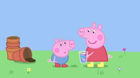 小猪佩奇:乔治也喜欢香水,却用泥水制作,真是太独特了!