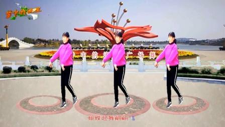 梦中的流星广场舞《陪你千山万水》舞蹈:凤梅