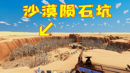 沙漠求生第11天!我发现了一个陨石砸出来的大坑,这里长着一大片的枯树林