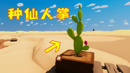 沙漠求生第12天!我做了个小土盆,终于能在热气球上种仙人掌啦