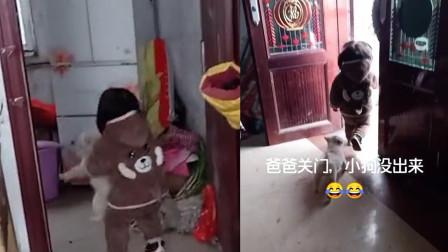 太可爱!萌娃在家门前跑6趟都没能甩开小狗,网友的反应亮了