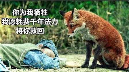男主救下只狐狸,当自己牺牲后,狐狸耗费千年法力来救他!奇幻片