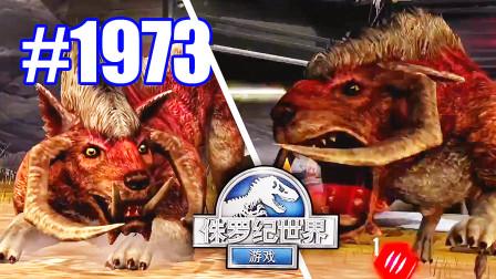 小鸢解说 侏罗纪世界1973满级古巨半犬vs满级古巨半犬,死亡眼神