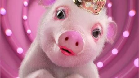 猪还是我认识的猪小迈吗,有点美