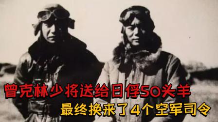 日军被俘后,曾克林少将送去50头羊,最终换来了4个空军司令