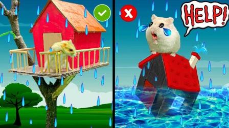 爱玩的仓鼠:树屋仓鼠在风暴迷宫陷阱里,这次难度指数8颗星!