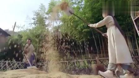 新倚天屠龙记:张无忌看赵敏辛苦干农活甜蜜笑了,赵敏亲自为无忌下厨煮粥