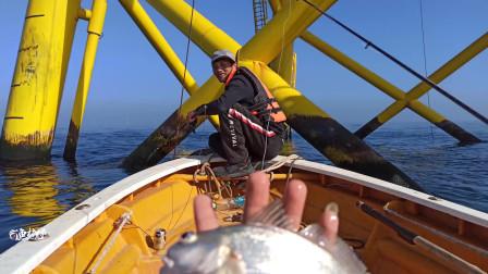 海上风车场,一个钓鱼的好地方,去慢了只能看别人钓鱼