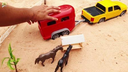 农场小拖车拉来四匹大马,拖拉机拉来青草