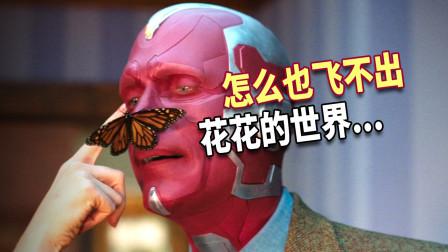 【旺达幻视×酒醉的蝴蝶】怎么也飞不出花花的世界...