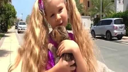 小可爱捡到一只可爱的猫咪,这下猫咪有新家了