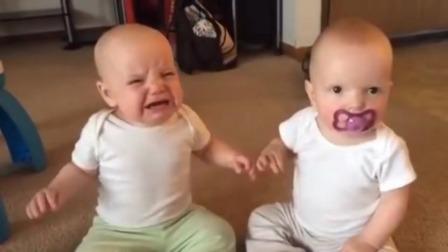 双胞胎抢奶嘴大赛