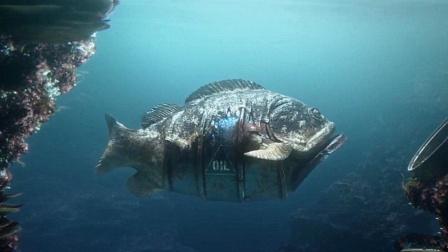 海洋被人类污染,生物们纷纷发生变异,鱼的身体竟变成了油桶