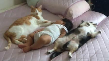 妈妈早晨去看宝宝有没有睡醒,没想到进屋一看,直接被萌倒了!