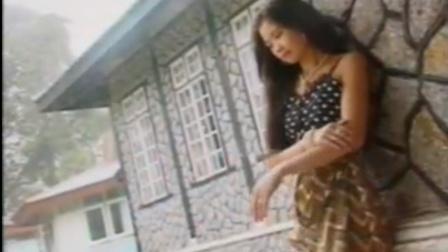 经典老歌-《片片枫叶情》,VCD版本