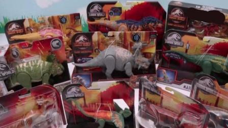 拆箱认识了解各种侏罗纪恐龙