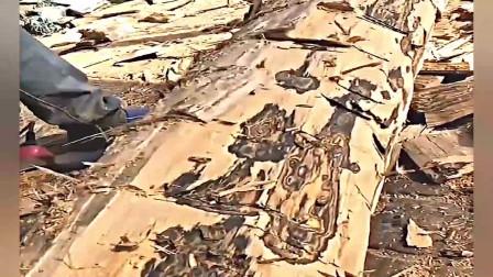 海南黄花梨,一棵枯树价值300万,做出的产品确实漂亮