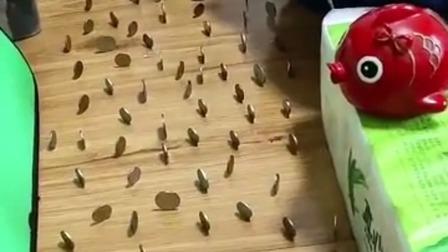 把硬币摆地板上,小猫过来时候不会碰倒一个
