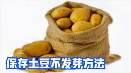 今天才清楚,土豆要这样保存,放一年不发芽不变青,方法简单实用