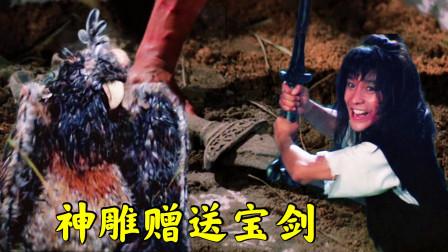 武侠片:少侠失足掉下悬崖,被神雕所救,神雕赠送宝剑一把!