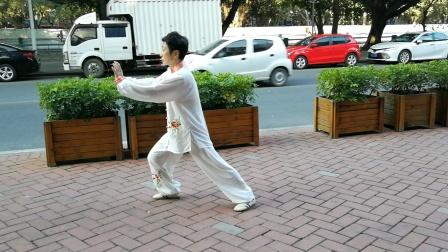 陈桂丽杨氏88式太极拳分段演示(5)