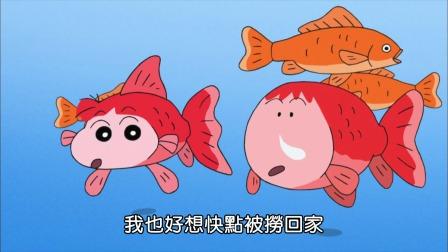 蜡笔小新 第九季 002 我们是金鱼哦