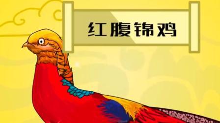 你知道吗,凤凰的原型竟是一只鸡!