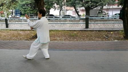 陈桂丽88式太极拳分段背面演示(2)