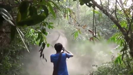 男子野外摄影,忽然冲出一头野生大象