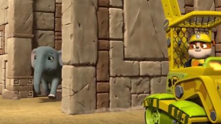 汪汪队:小砾开挖土机,解救大象宝宝