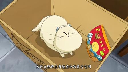 甜心格格:小咪为了丝丝,到御膳房里,抢夺仅剩的薯片!