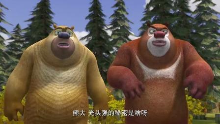 熊出没:动物们没礼貌,硬生生闯进光头强家,看看秘密到底是啥