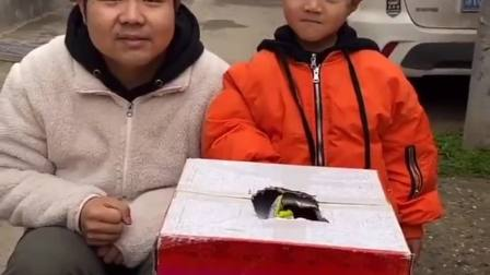 趣味生活:箱子里面有宝贝呢