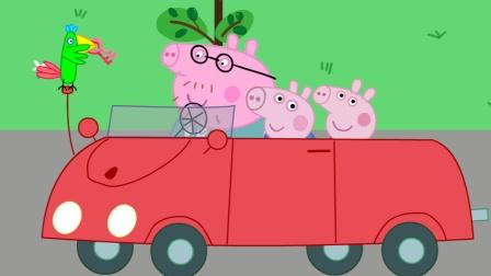 猪爸爸佩奇乔治出门野餐弄丢了钥匙,鹦鹉波莉帮猪爸爸捡回了钥匙