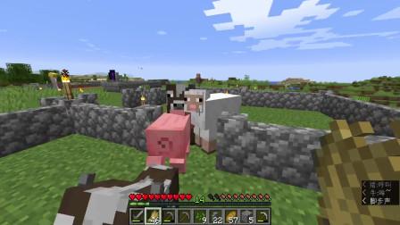 我的世界:养了几头牛和羊,结果跑进来一只小猪