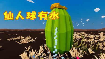 沙漠求生第15天!我把吸管戳进水仙人球,里面有水流出来还能喝