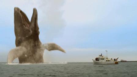 如果你不知道鲸鱼的体型有多大,不妨看看众人的表情,震撼