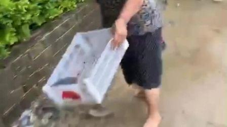 一场大雨后有人哭了 有人却笑了。