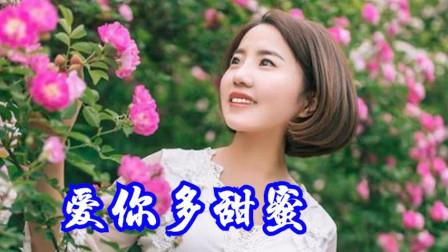 网络红歌《爱你多甜蜜》红蔷薇演唱