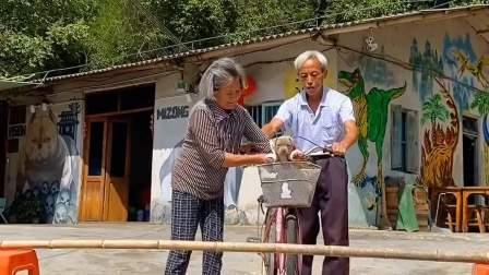 爷爷奶奶这波操作稳了