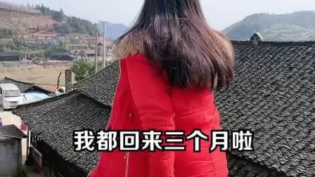 听说村里年轻人创业回乡了,有缺女朋友的吗?