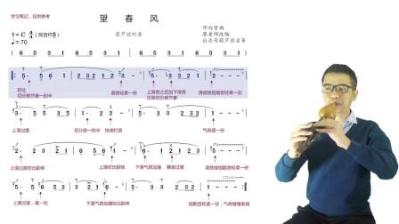葫芦丝教学《望春风》教程视频,唱谱一句一句吹奏讲解,C调演奏跟着学真方便!