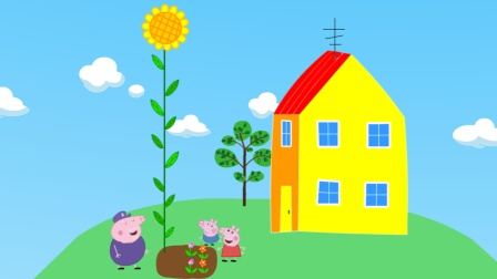 猪爷爷教佩奇乔治种花,乔治种出的向日葵比房子还要高