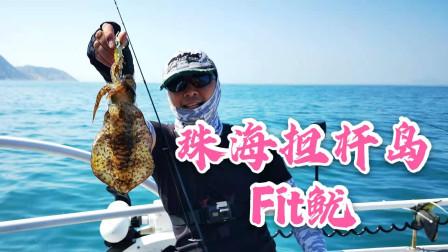 珠海担杆岛Fit鱿,巨型鱿鱼不断拉出水面,刺身白灼两相宜
