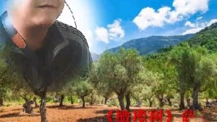 橄榄树(萨克斯独奏—左岸)