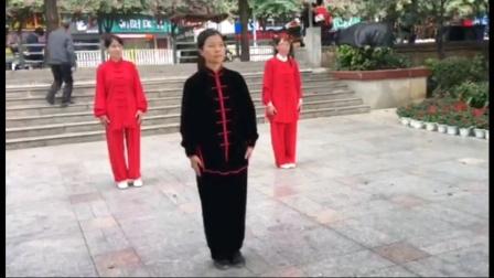 老年太极拳杨式26式