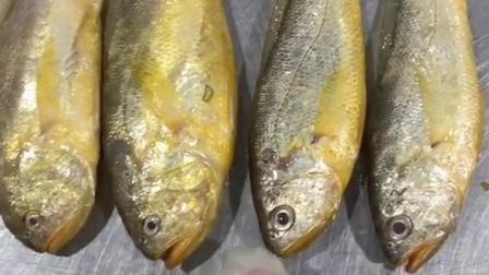 梅童鱼和小黄鱼,长得很像但确实不一样。