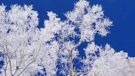 冰雪风情之内蒙古冬景